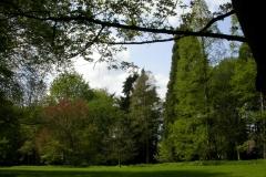 Führung tertiäres Arboretum 24.04.2005 58