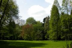 Führung tertiäres Arboretum 24.04.2005 61