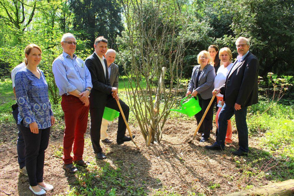 Tertiäres Arboretum – lebendes Baummuseum in Neuss-Reuschenberg – Selikumer Park