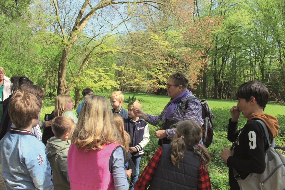 Führung für Kinder, durch dem HMVR im Baummuseum (Arboretum) Neuss